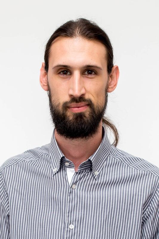 Hrvoje Pavičić
